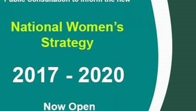 CWI Submission on the National Women's Strategy